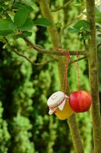 apple-tree-1574325_960_720